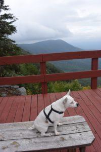 fort mountain lookout skylar