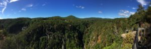 tallulah gorge panorama