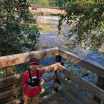 watson mill bridge 30