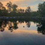 retro camper okefenokee swamp 101 of 116