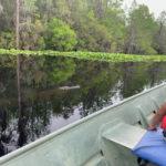 retro camper okefenokee swamp 41 of 116