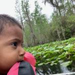 retro camper okefenokee swamp 43 of 116