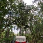 retro camper okefenokee swamp 93 of 116
