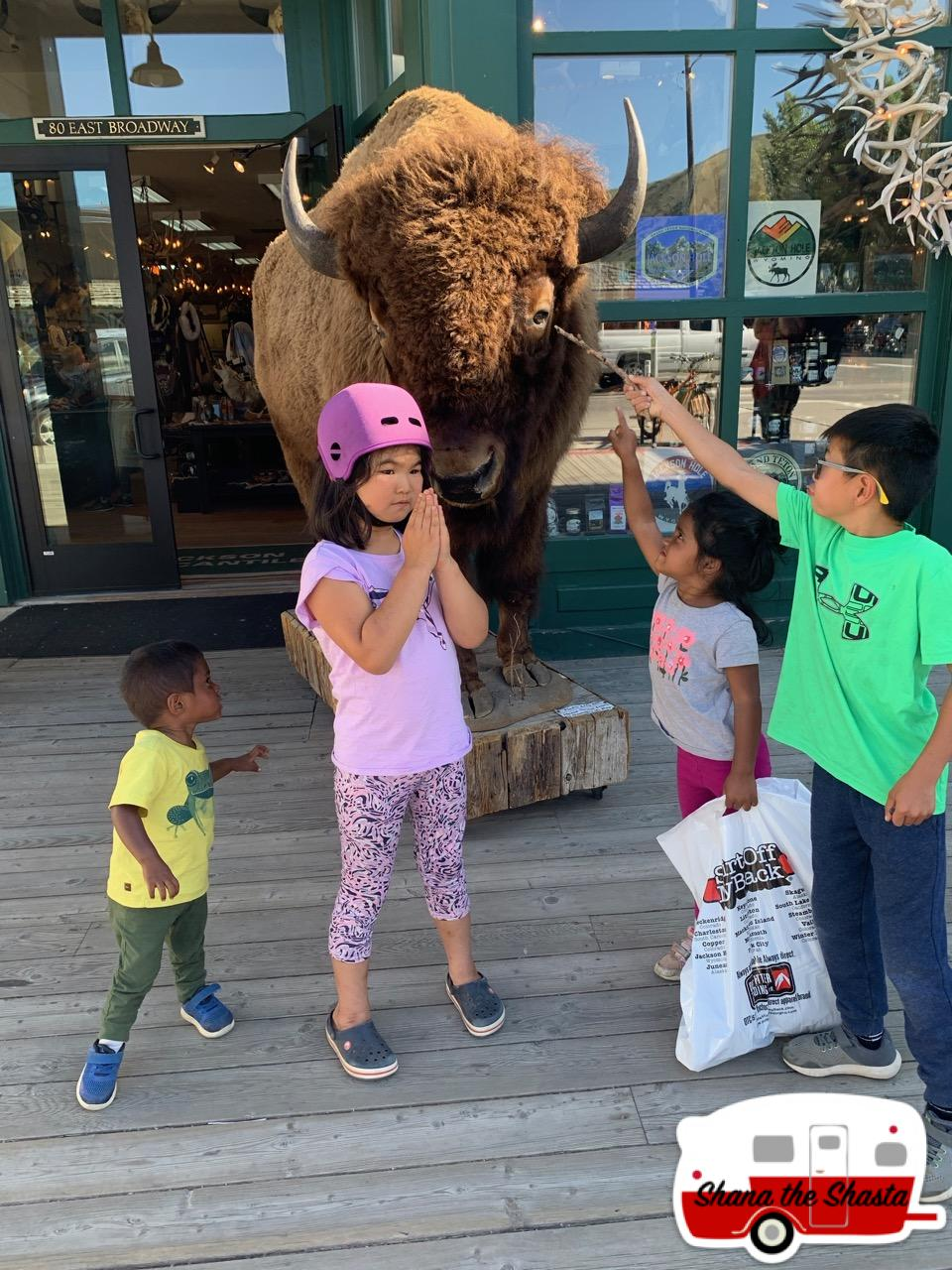 Jackson-Hole-Stuffed-Buffalo-Fun