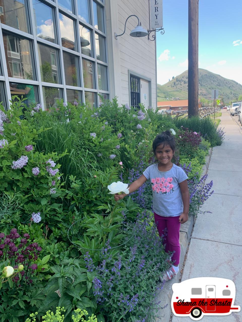 Jackson-Wyoming-Sidewalk-Blooms