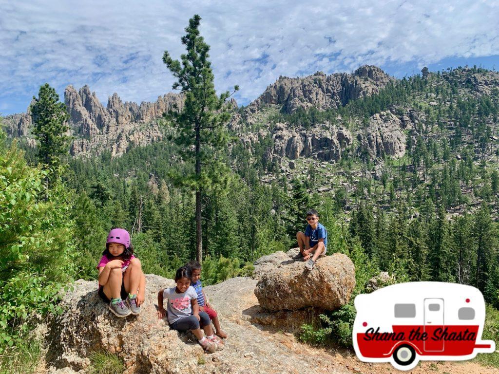 Overlooking-Needles-in-Custer
