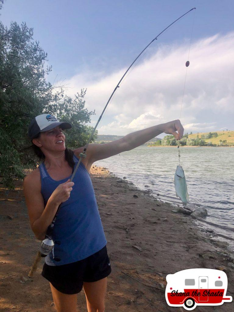 Second-Walleye-Catch-in-Angostura-Reservoir